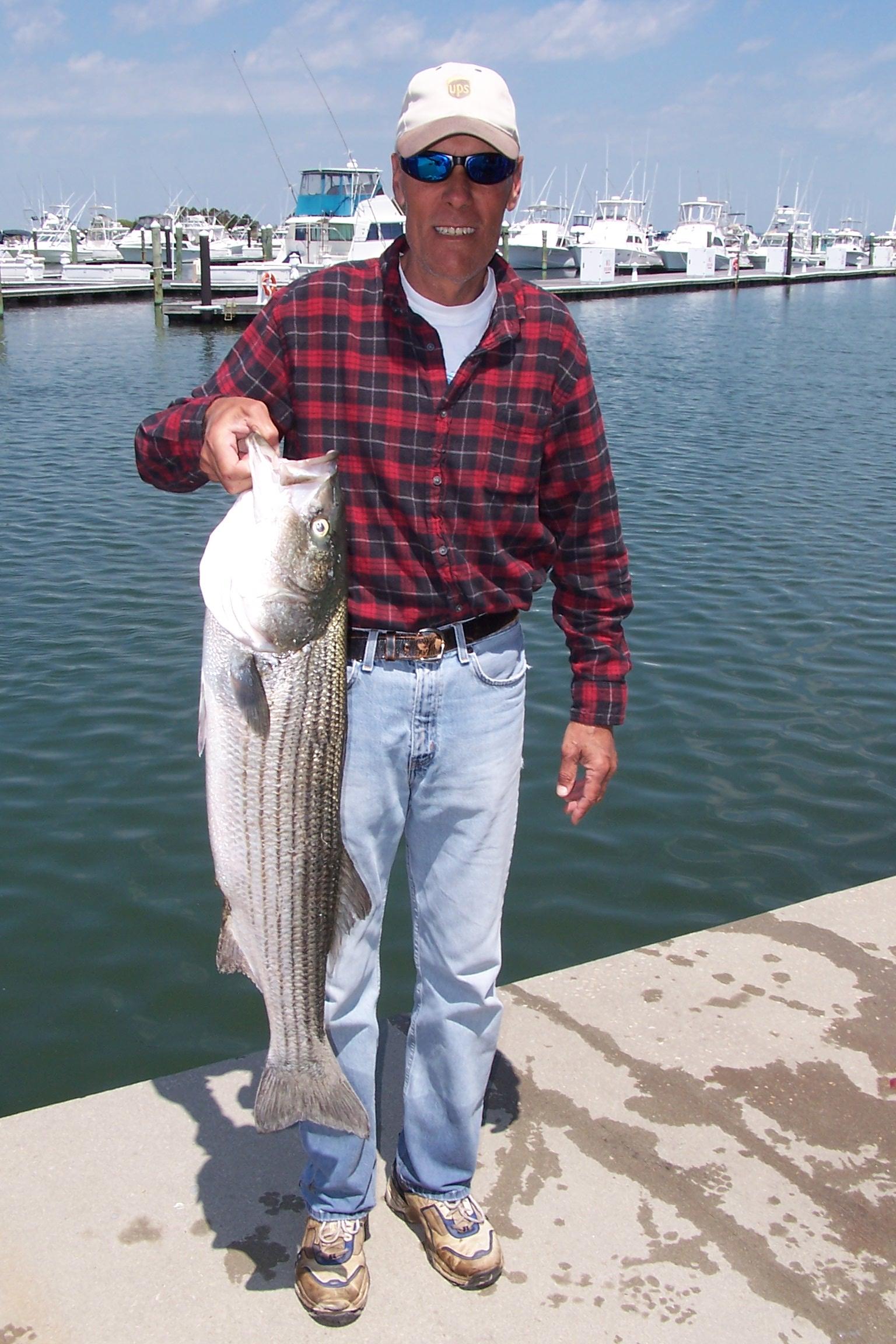 20 May 2014 Indian River Marina Fishing Reports