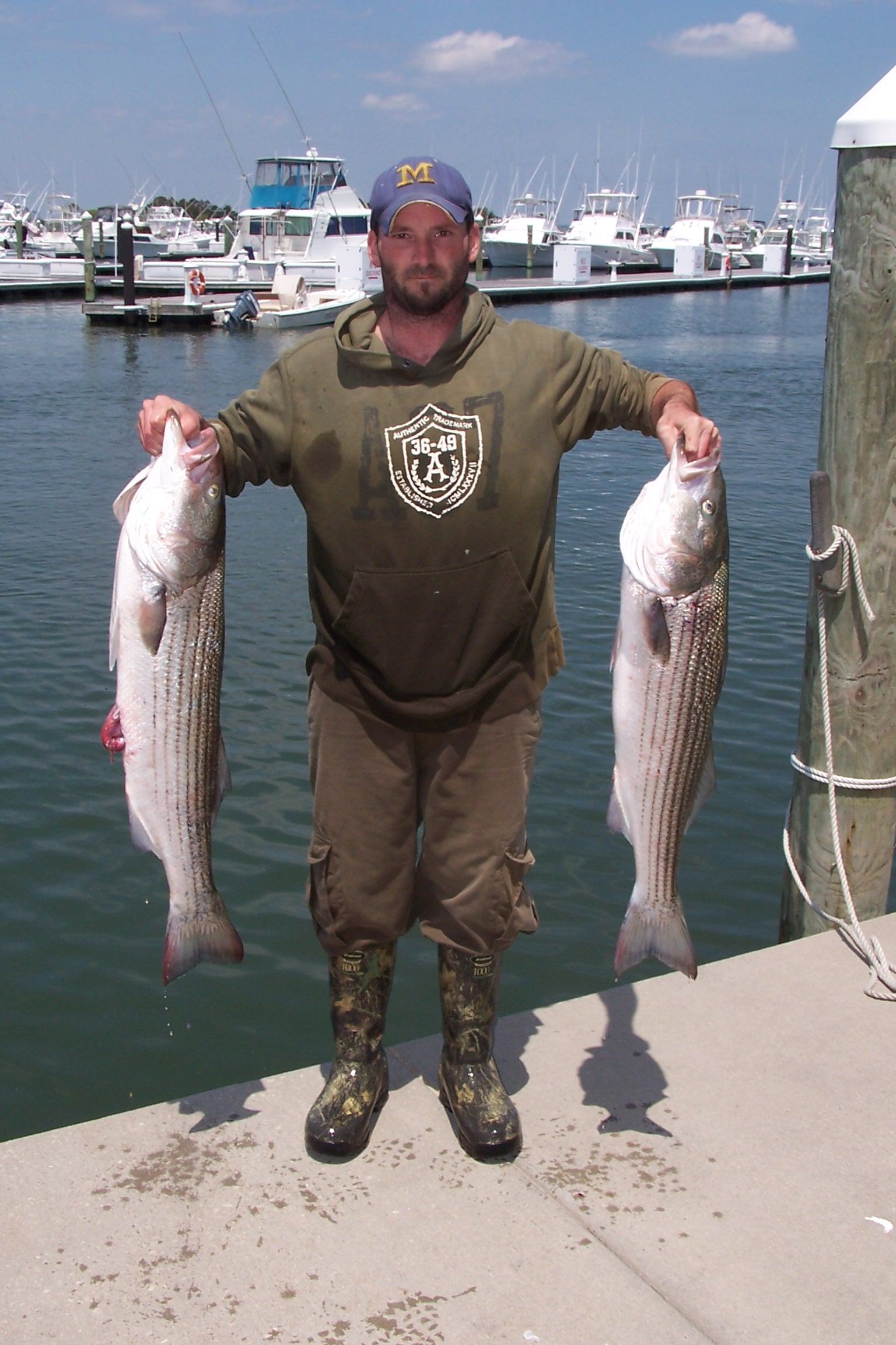 Fishing report archives page 22 of 25 indian river for Indian river inlet fishing report