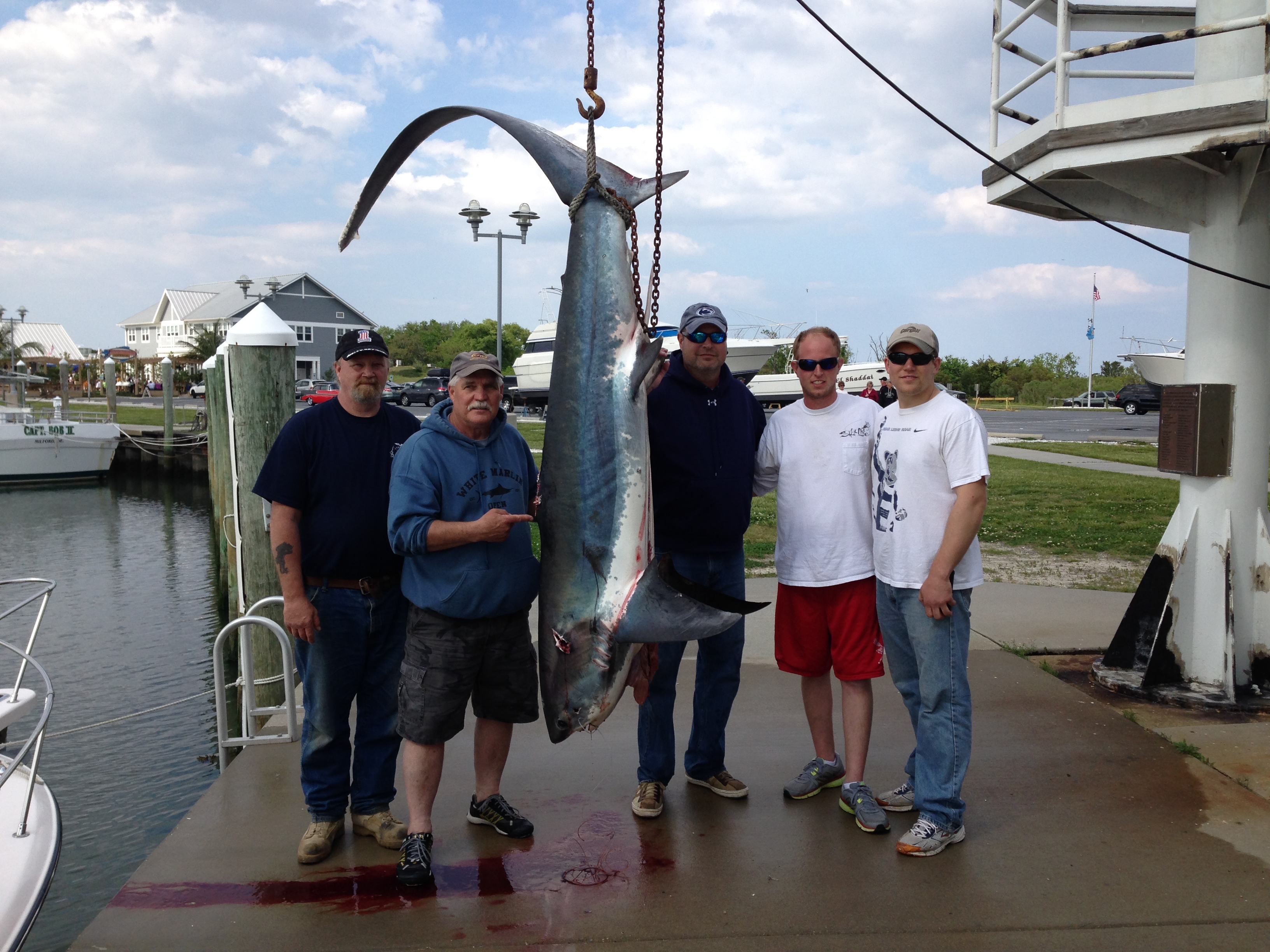 Indian river bay delaware fishing report for Indian river inlet fishing report