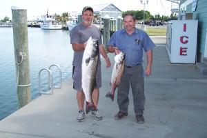 June 8 001rockfish