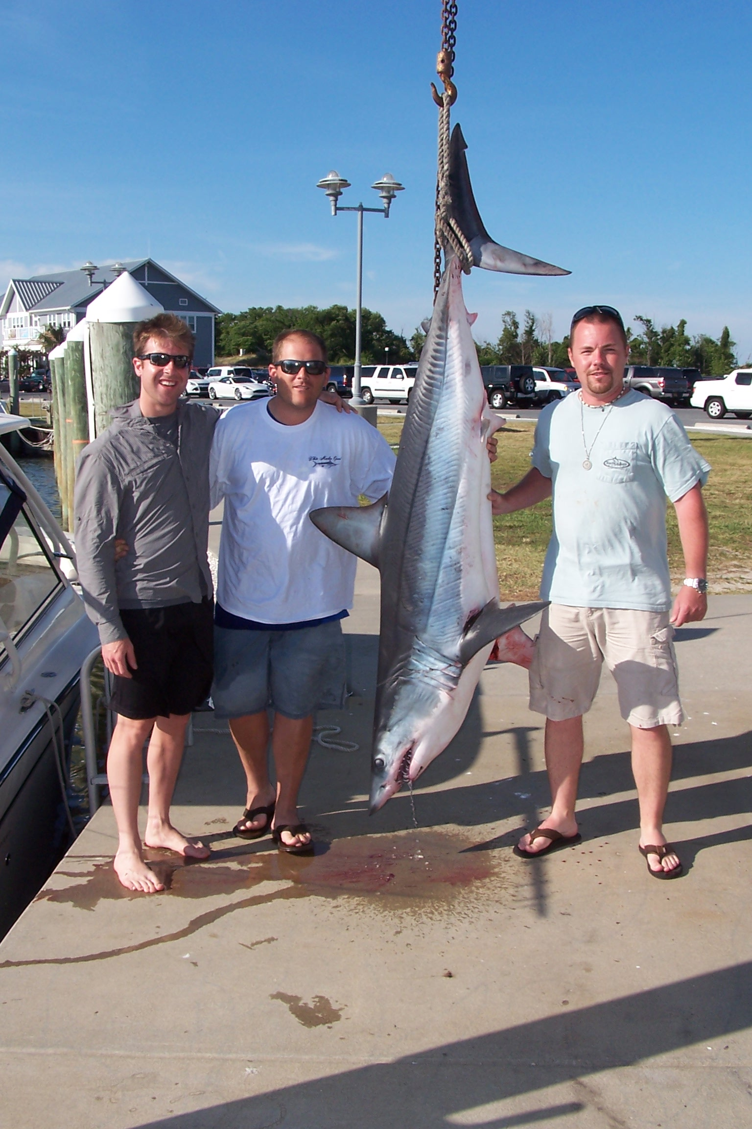 Fishing report for 7 18 14 indian river marina fishing for Fishing in delaware