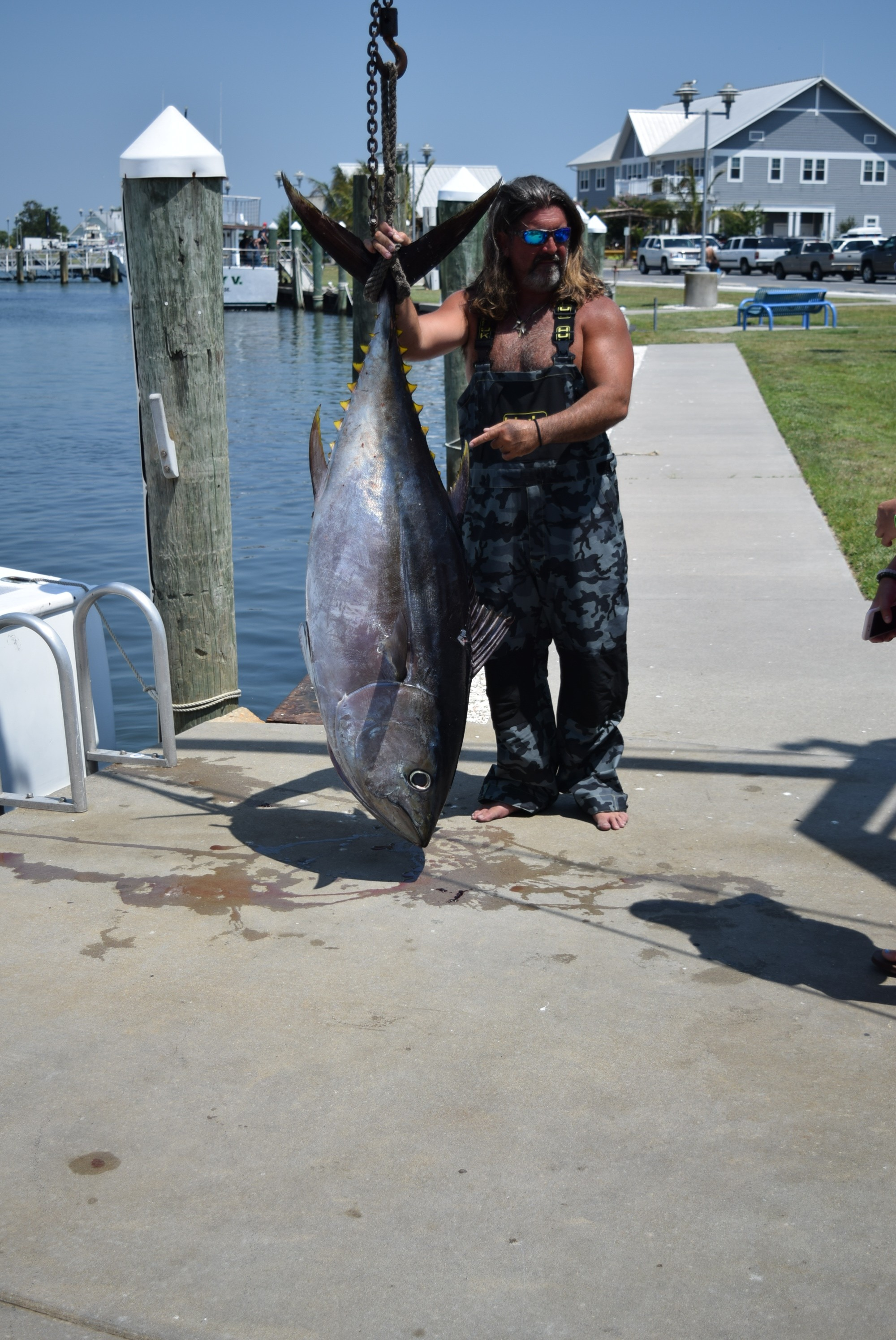 2015 indian river marina fishing reports and marina news for Captain mike s fresh fish seafood