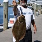 flounder delcolla  9.18.15