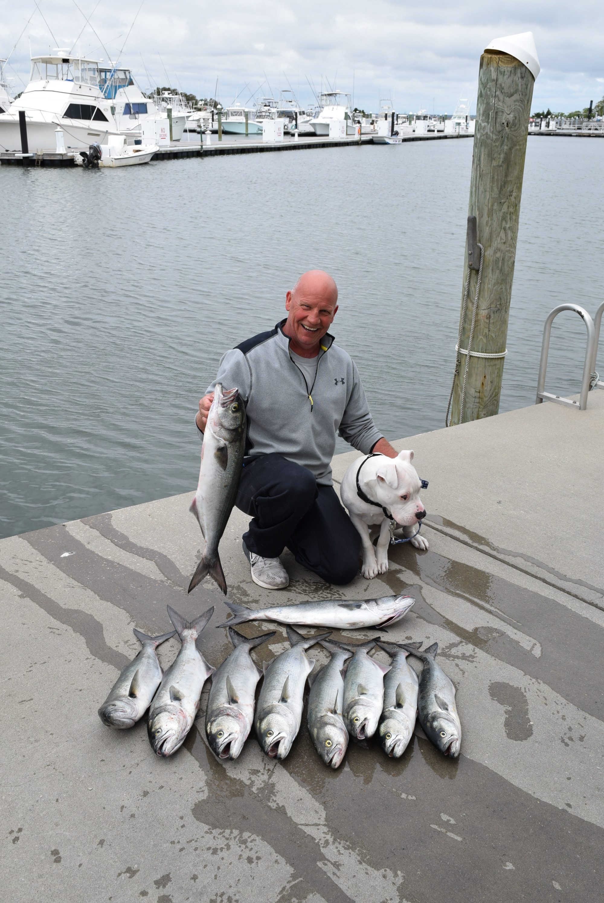 fishing report 5 14 17 indian river marina fishing